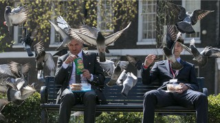 Gary Lineker gets mobbed by pigeons in Walkers TV commercial