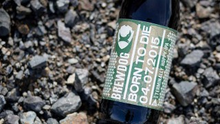 Bottle of Brewdog's Born to Die