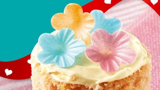 Dr Oetker's edible cake decorations