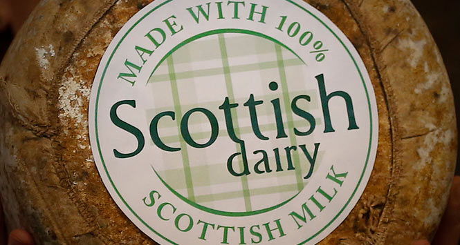 Scottish Dairy branded cheese