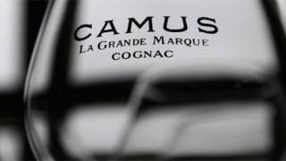 Camus cognac glass