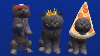 McVitie's kittens