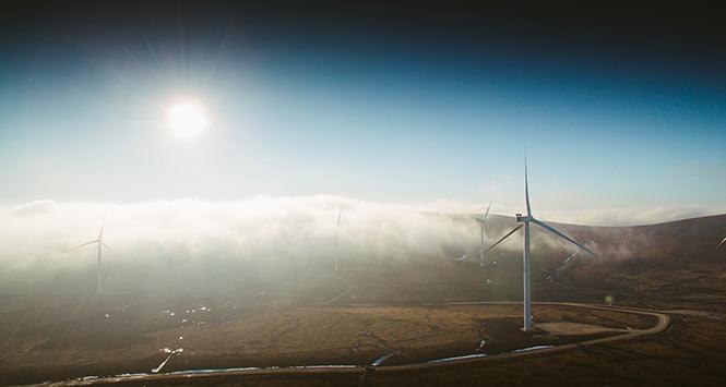 Moy wind farm