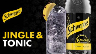 Gin and Schweppes tonic