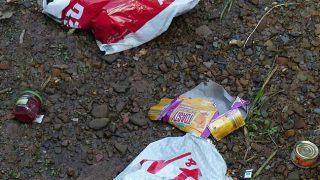 plastic bag litter