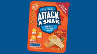 Attack A Snak