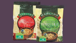 Hamylns porridge