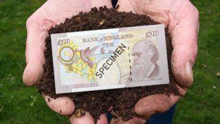 Darwin £10 note