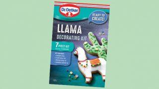 Dr Oetker llama kit