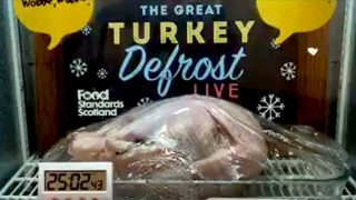 great turkey defrost
