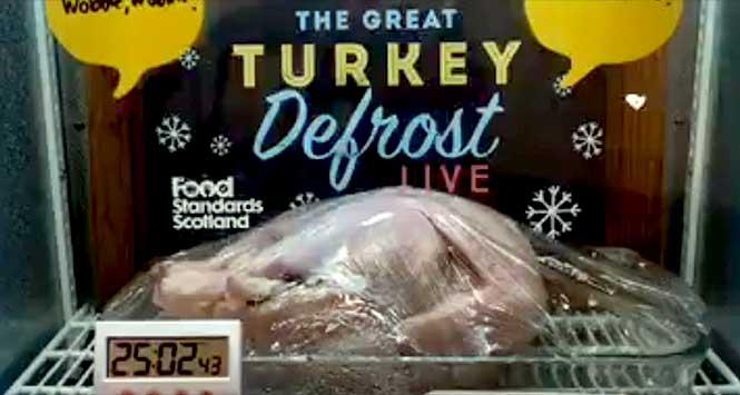 great turkey defrost