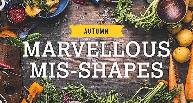 Marvellous mis-shapes promo