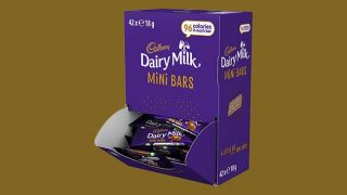 Cadbury Dairy Milk Mini Bars