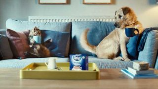 Tetley Tea advert