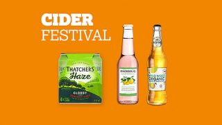 Nisa cider festival