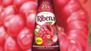 Ribena Raspberry & Rhubarb flavour squash
