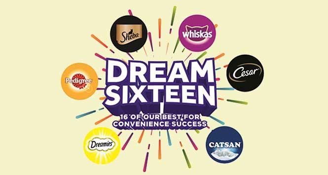Dream Sixteen