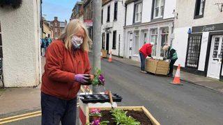 North Berwick in Bloom