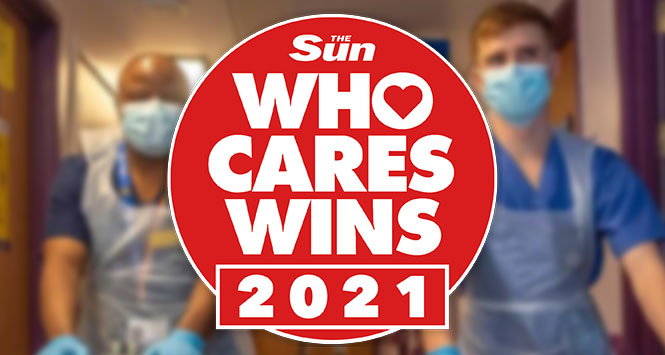 The Sun Who Cares Wins 2021
