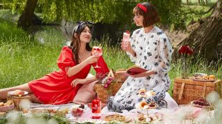 Luxurious picnic