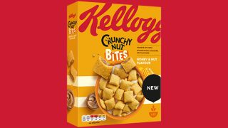 Kellogg's Crunchy Nut Bites